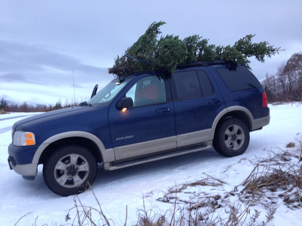 Our car - Ford exploter (2004) 7 seats