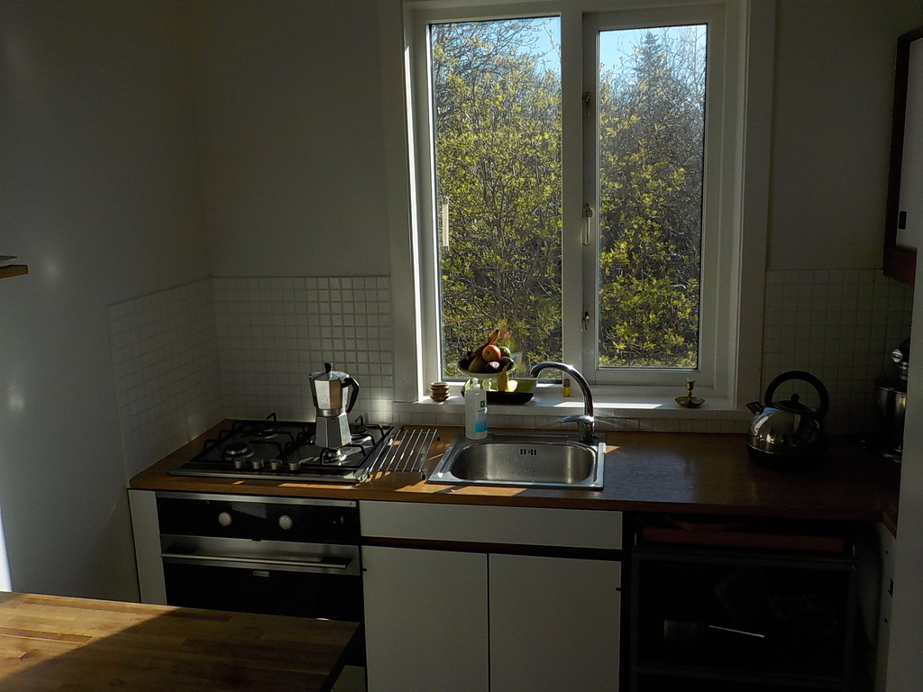 Kitchen (in the morning sun)