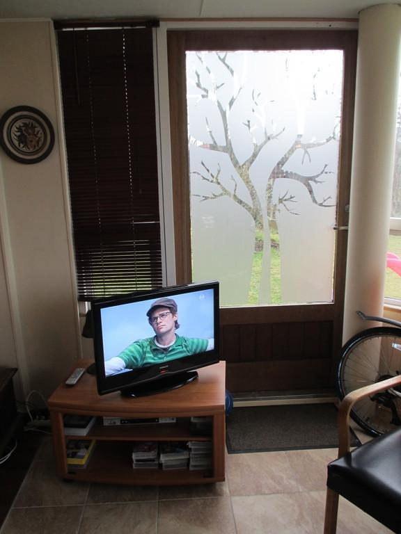 Living room - garden door