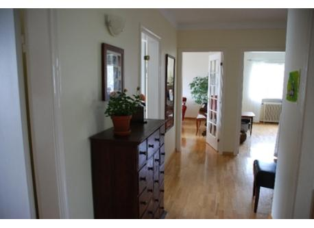 Downstairs hallway. Openings to office, dining room, living room, bedromm and kitchen in that order