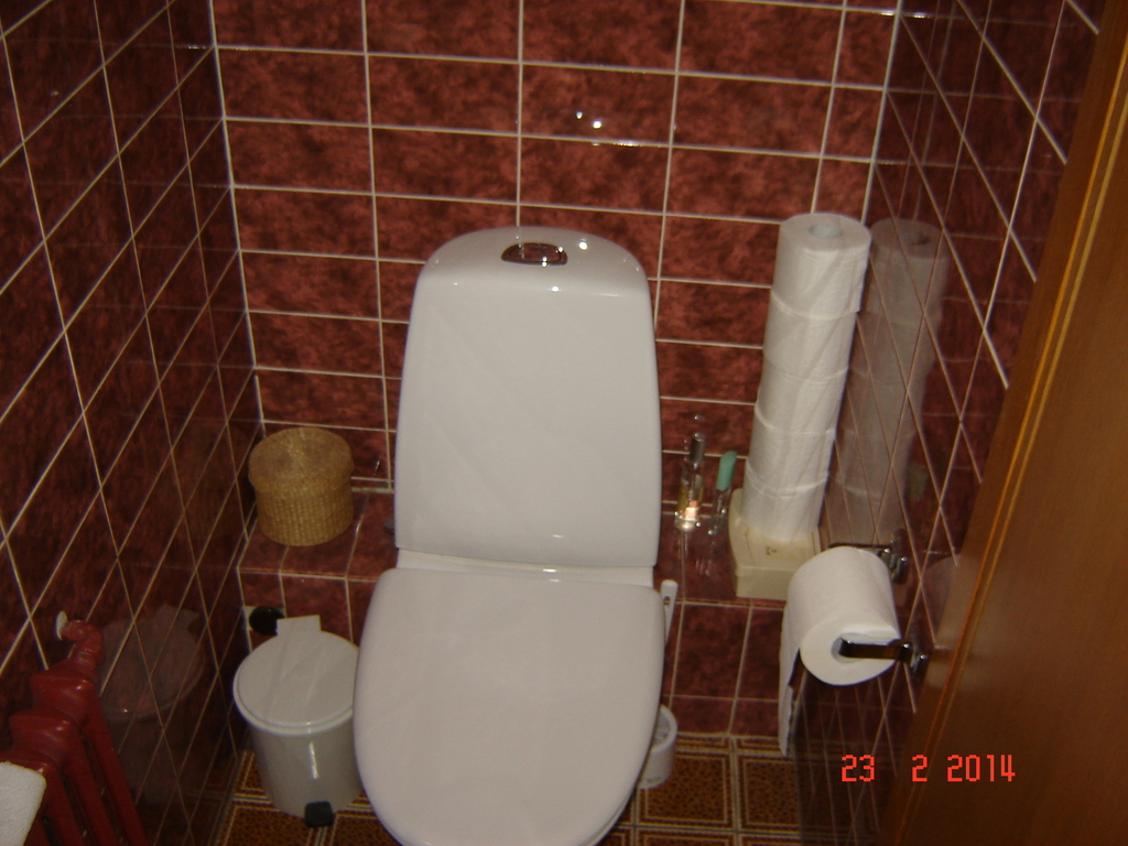 Upstairs toilet 1