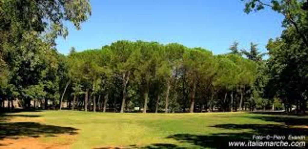 Fabriano garden