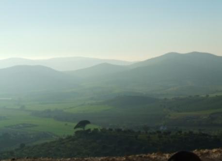 La campagna intorno Montemerano