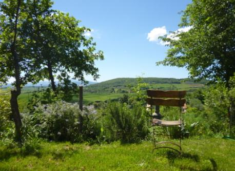 A chair in the Nature: view from the garden