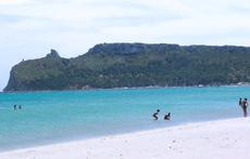 a view of our beach