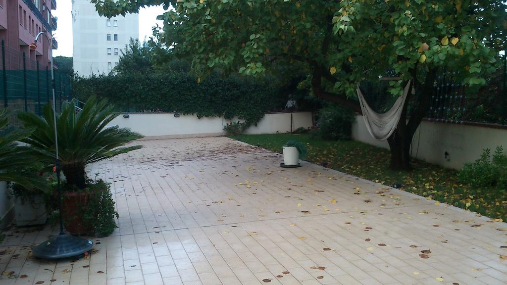 big terrace on the backyard