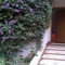 entrance of the apartment is at ground  floor. The apartment is in a private park with green around and no car noises