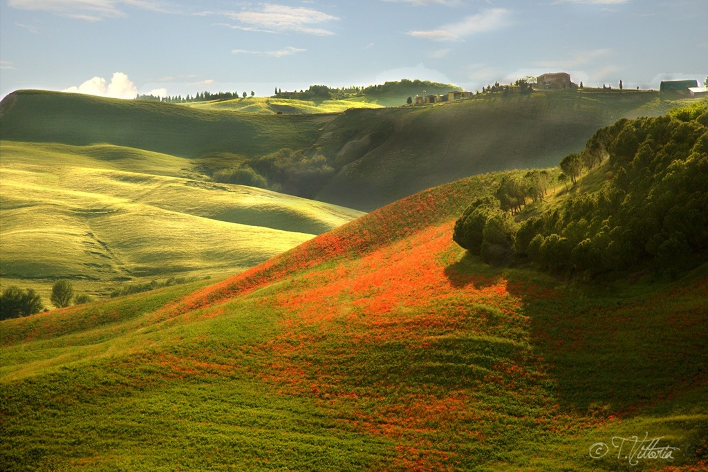 Unforgettable Tuscany ...