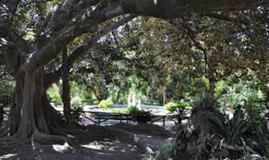 Orto Botanico Cagliari