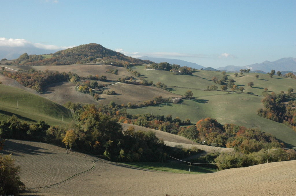The Marches hills in the fall
