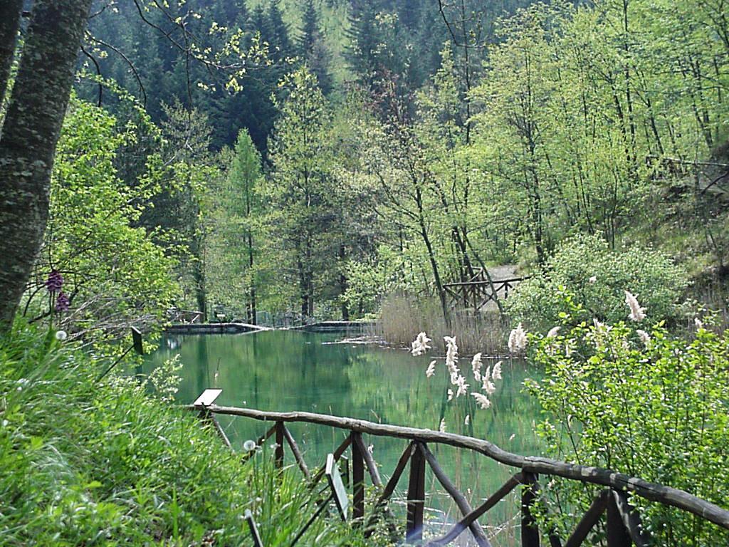 Parco Nazionale Foreste Casentinesi, in auto raggiungibile in 56 min