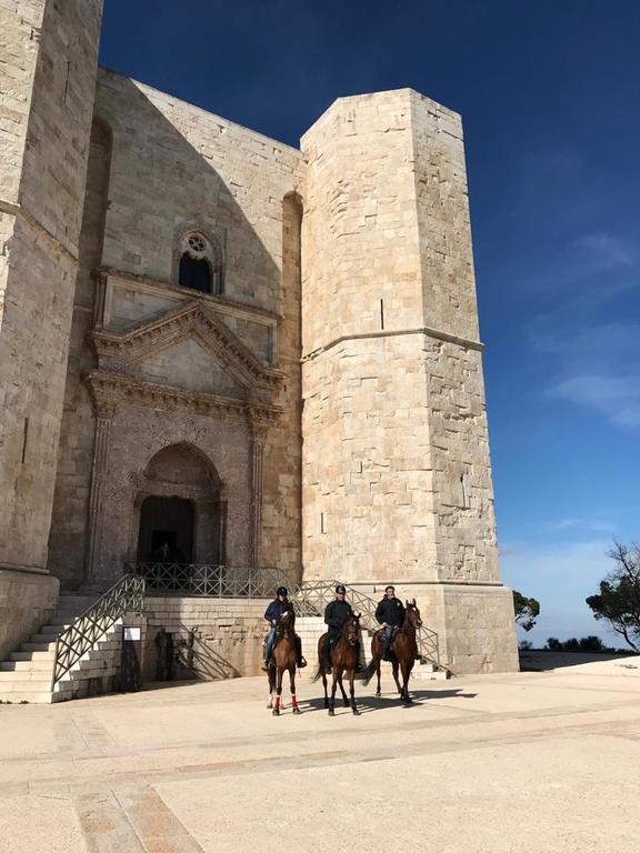 Andria Castel del monte - Cavalieri