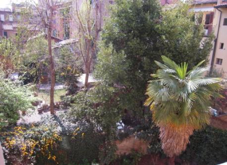 Le finestre si affacciano su un giardino non di proprietà