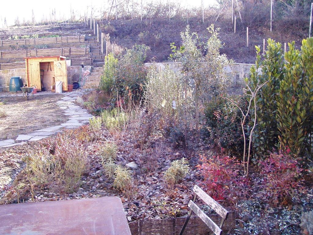 giardino retrostante