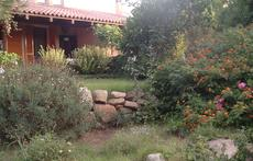 The garden around the house