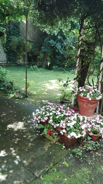 Garden in late spring