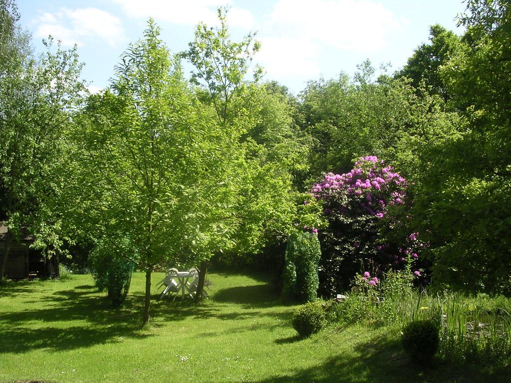 le fond de notre jardin