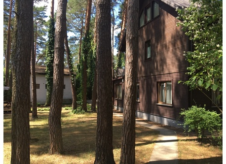 a ground level 2 bedroom apartment with a double deck in the private yard under the pines