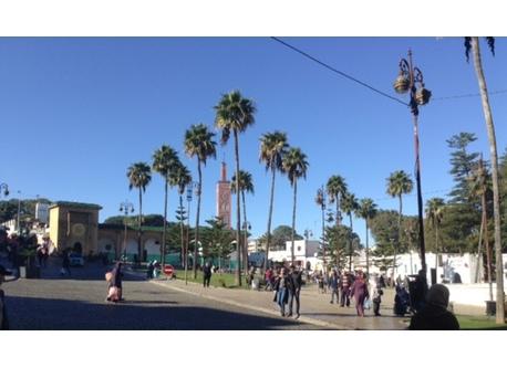 La ville la plus excitante ,la plus cosmopolite et  la plus tolérante du monde: telle nous est apparue Tanger.