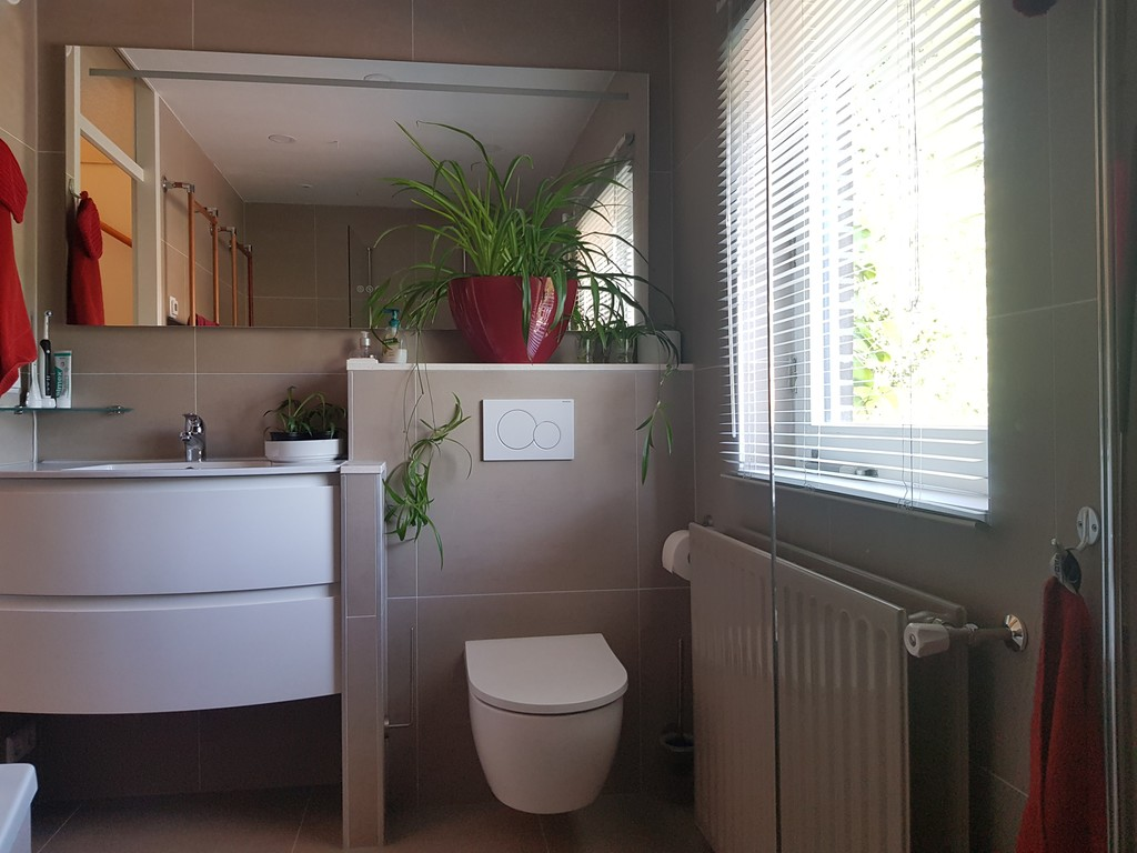 bathroom with the second toilet on the first floor