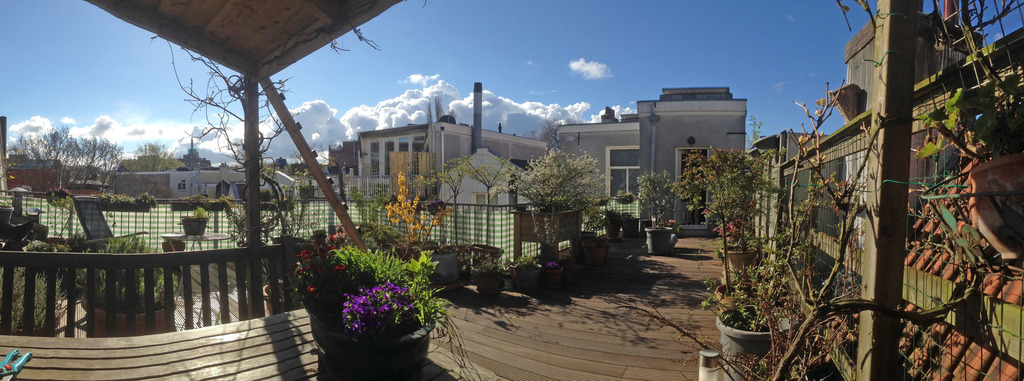 Roof garden -- the place to be!