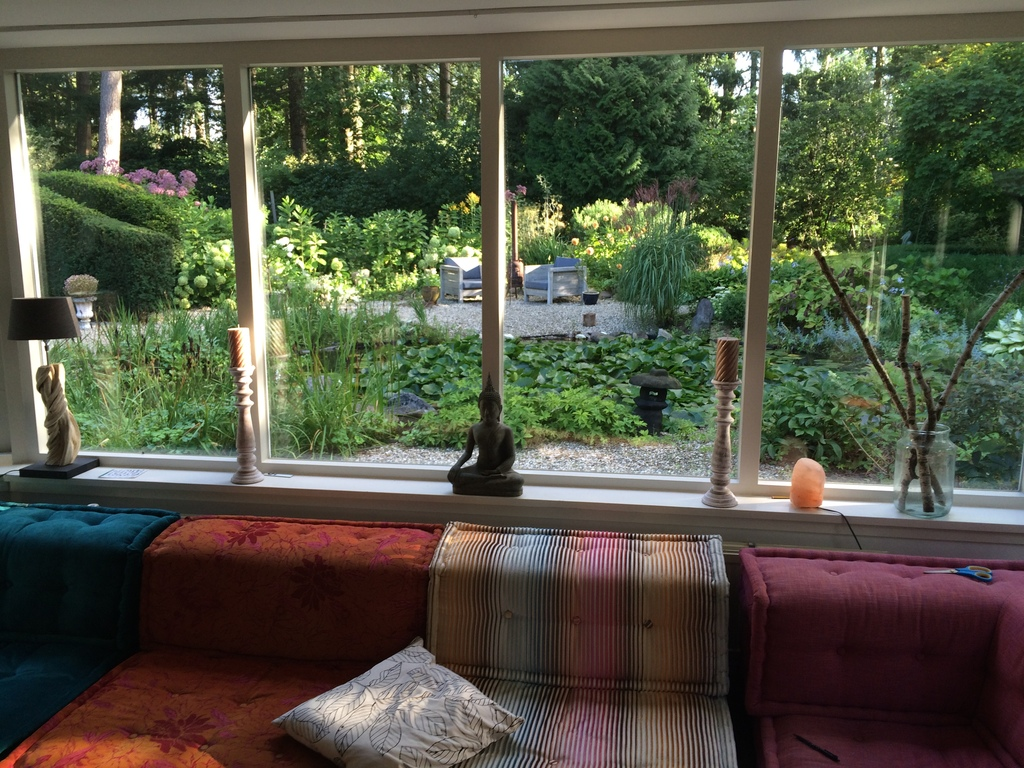 View from living room into the garden