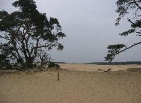 Slingeplas (3 km)