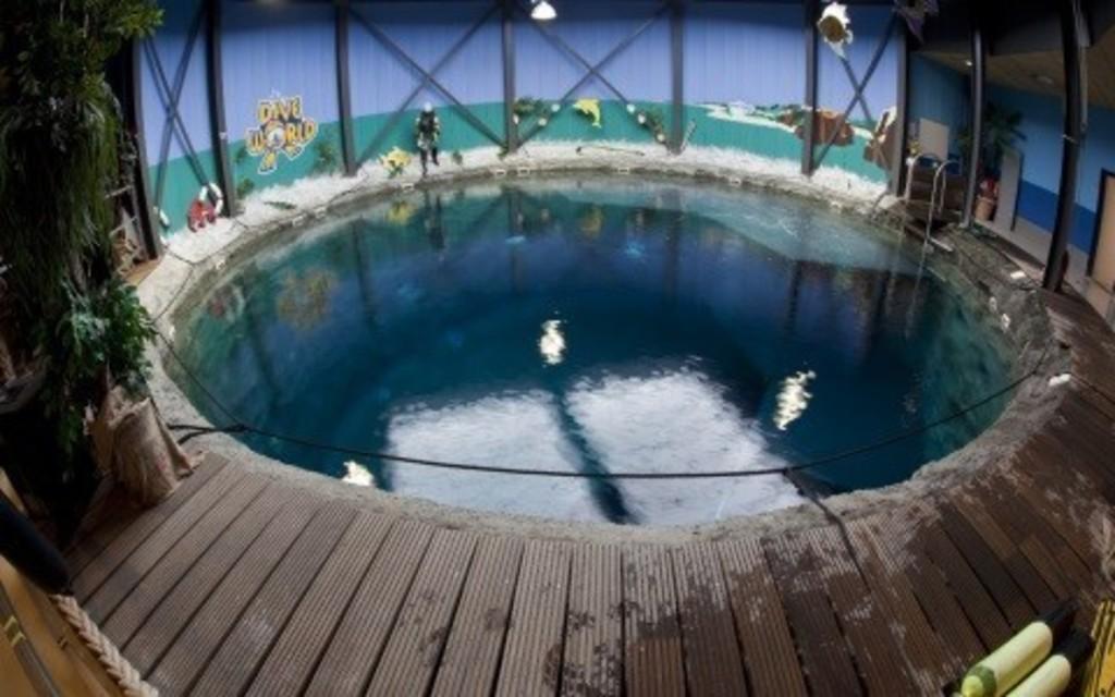 Indoor Diving 20 min. drive (https://www.go-planet.nl/op-het-park/diveworld/)