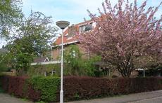 The house in spring, on a corner in a quiet neighbourhood near the town centre and a large grassy play field.