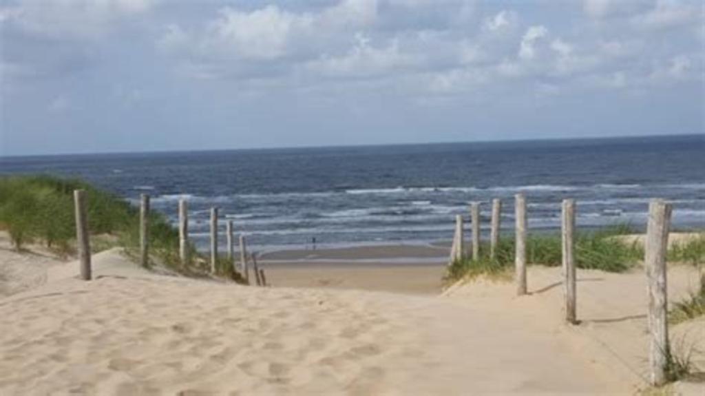 Beach half an houre from Amsterdam
