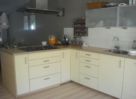 Royal modern kitchen with oven, microwave, dish washer etc