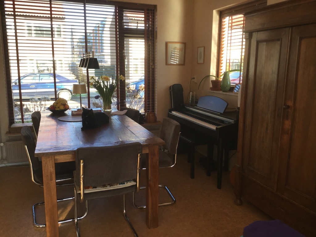 Dining area and Yamaha piano