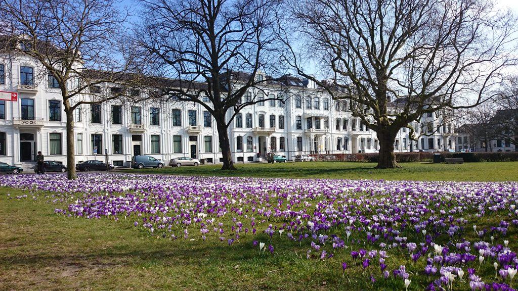 Kenau Park Haarlem in spring