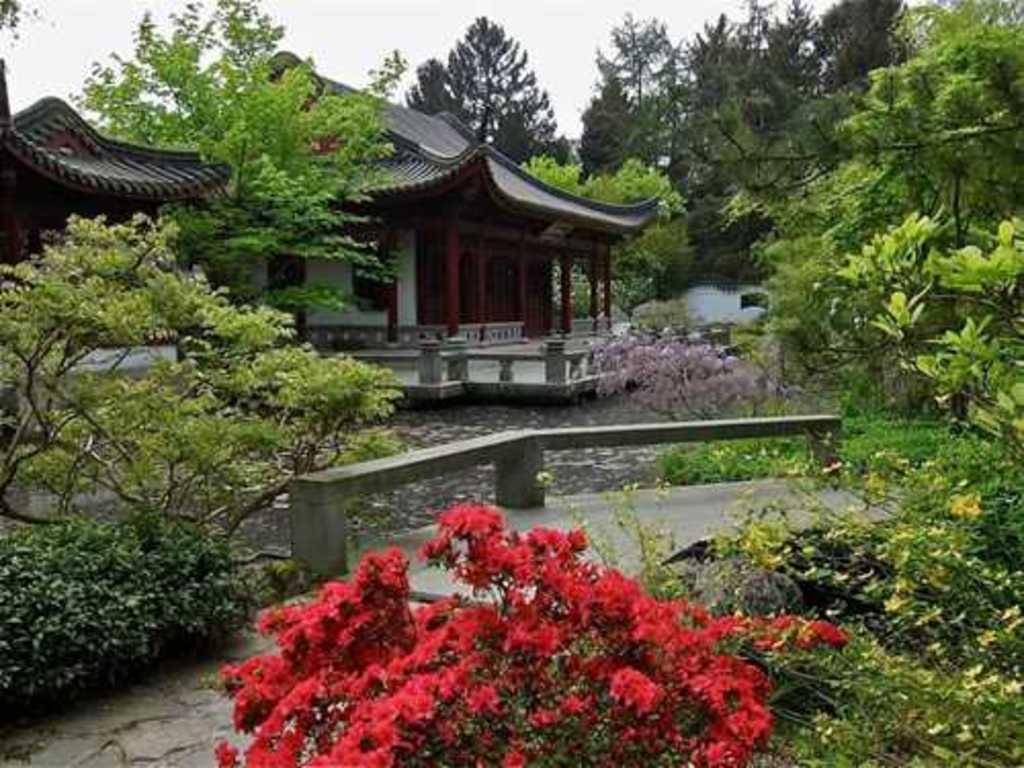 Chinese Garden in Hortus Botanicus Haren (30 km)