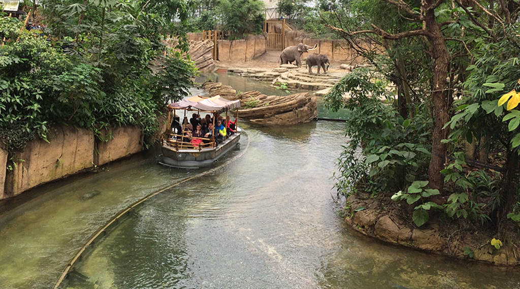 Go on safari in Wildlands Adventure Zoo Emmen (15 km)