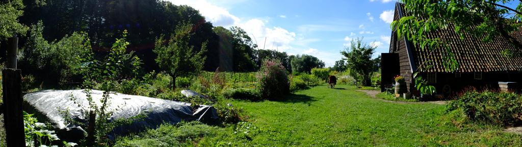 Biological garden in Amelisweerd...