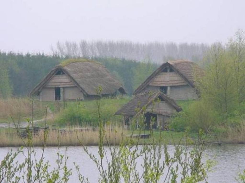 Typicly 'Plaggenhutten' in 'Natuurpark'