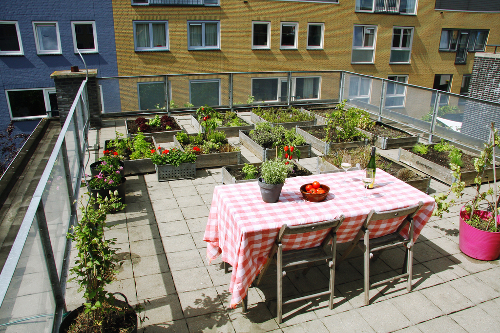 Our terrace on the roof