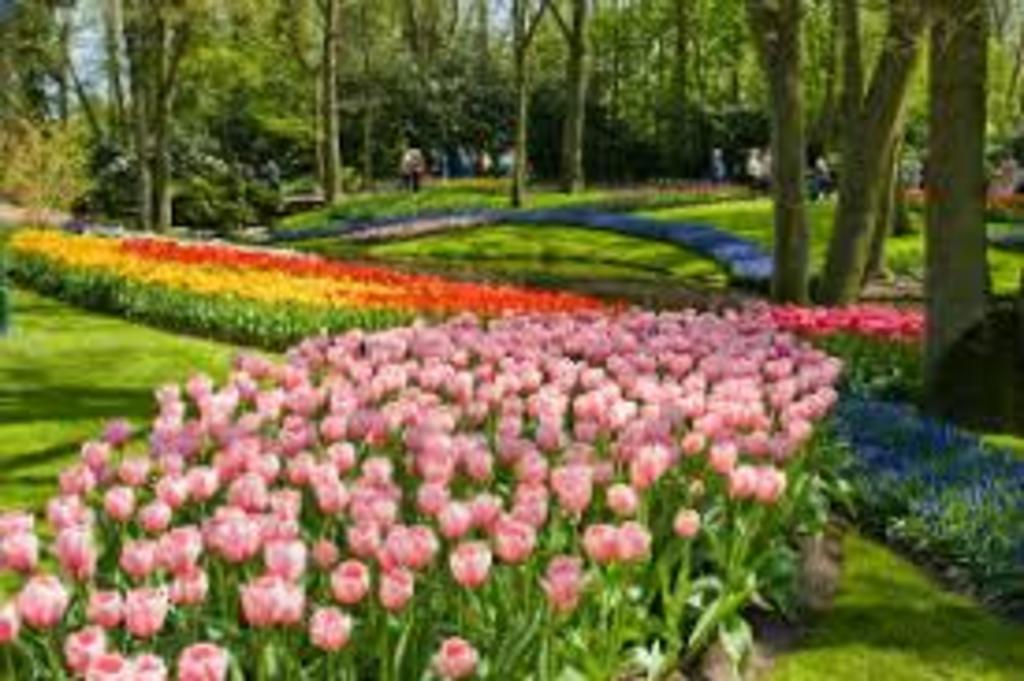 Vondelpark, 5 minutes walk away