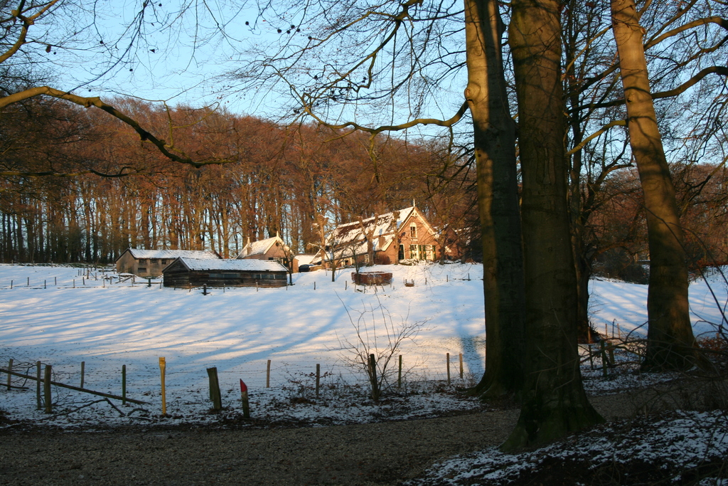 Farm in the forest (1 km)