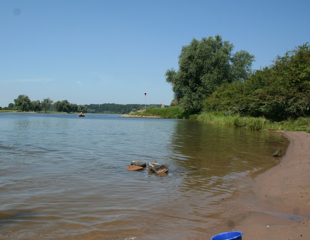 Small beach on the river Rijn (5km)