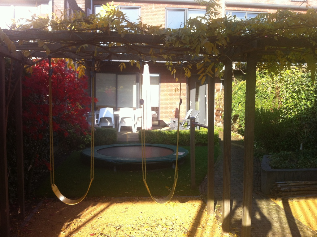 Backyard with swings, trampoline and a large terras