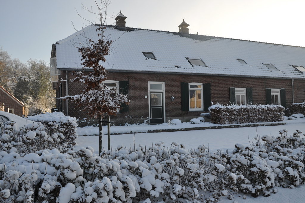 Front view in snowy winter