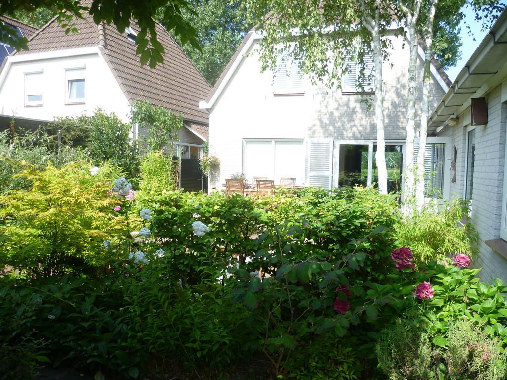 back garden and entrée
