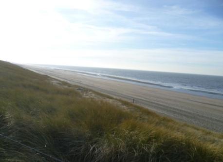 beach Noordwijk