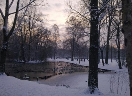 The beautiful Oosterpark is only 3 minutes away.