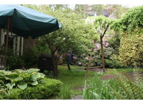 back garden (with swing)