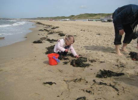 with grandchild Eva digging for gold;-)