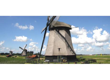 Windmills (7 km)