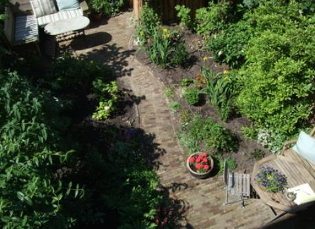 garden behind house